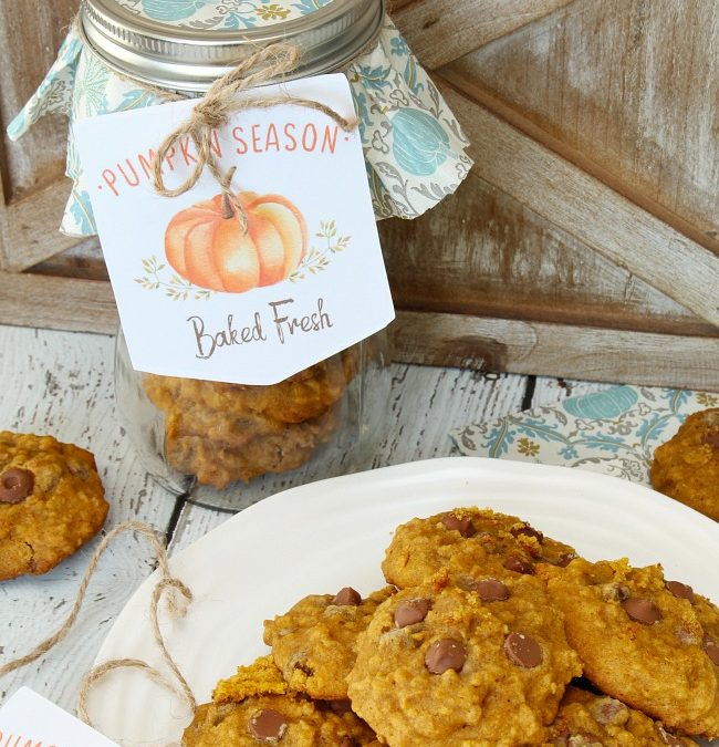 Pumpkin Chocolate Chip Cookies – Clean and Scentsible