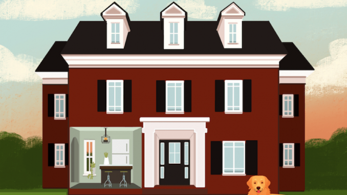 If These Dogs Can Keep Their Imaginary Homes Clear, So Can You – Better HouseKeeper