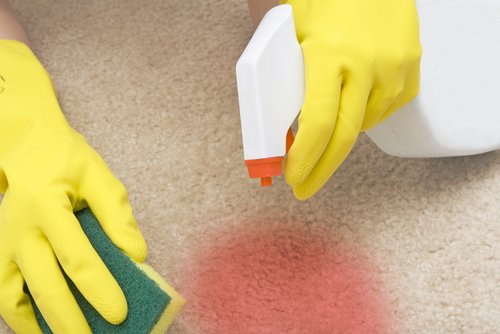How to Remove Vomit Stains & Smell from Carpet?
